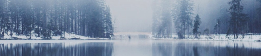 Cold Creek Review crop with lake and trees in winter scene