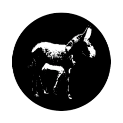 Tiny Donkey logo with a black and white silhouette of a donkey against a black circle