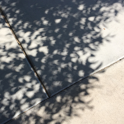 Partial solar eclipse through the shadows of leaves on pavement at the University of Arizona in Tucson, Arizona on August 21, 2017