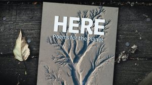 Copper Canyon Press book cover for HERE: Poems for the Planet