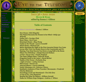 Screenshot of table of contents of Issue 36 of online journal Eye to the Telescope