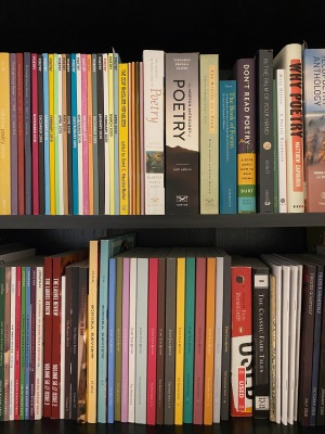 Image of poetry and fairy tale and other books in my bookshelf